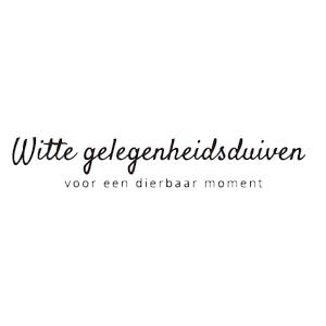 Witte gelegenheidsduiven